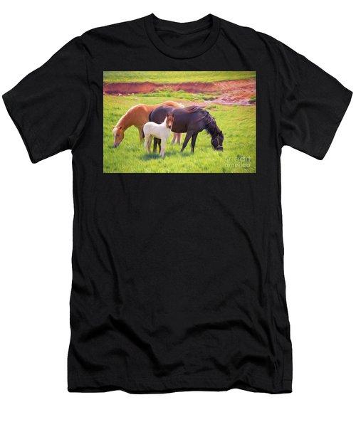 Curious Colt And Mares Men's T-Shirt (Athletic Fit)