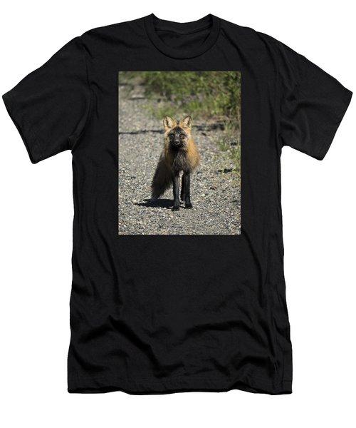 Curious Cross Men's T-Shirt (Athletic Fit)