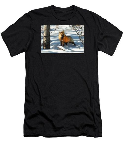 Curious Fox Men's T-Shirt (Athletic Fit)