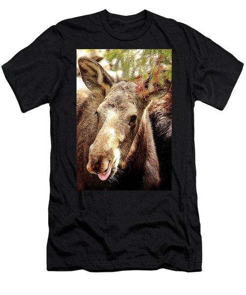 Cutie Moose Men's T-Shirt (Athletic Fit)