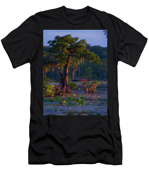 Cypress In The Sunset Men's T-Shirt (Athletic Fit)