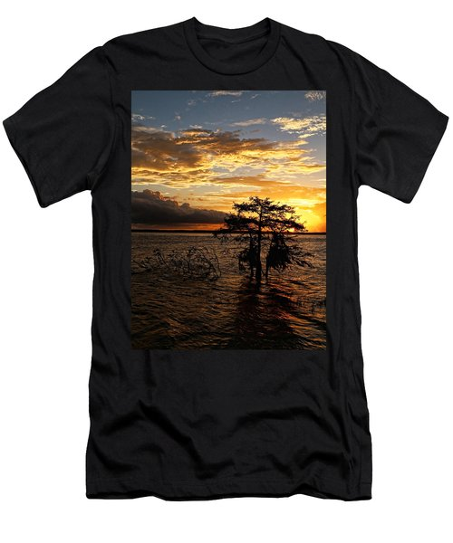 Cypress Sunset Men's T-Shirt (Slim Fit) by Judy Vincent