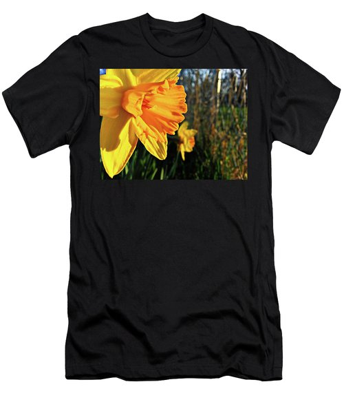 Men's T-Shirt (Athletic Fit) featuring the photograph Daffodil Evening by Robert Knight