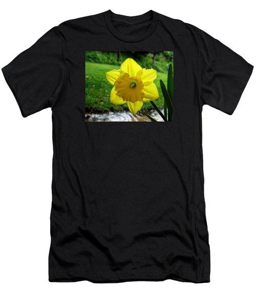 Daffodile In The Rain Men's T-Shirt (Slim Fit) by Dorothy Cunningham