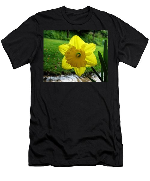 Daffodile In The Rain Men's T-Shirt (Athletic Fit)