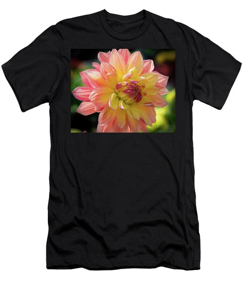 Dahlia In The Sunshine Men's T-Shirt (Slim Fit) by Phil Abrams