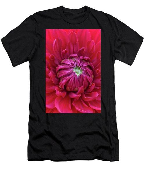 Dahlia Heart Men's T-Shirt (Athletic Fit)