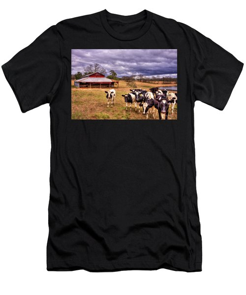 Dairy Heifer Groupies The Red Barn Dairy Farming Art Men's T-Shirt (Athletic Fit)