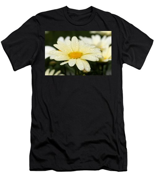 Daisy After Shower Men's T-Shirt (Slim Fit) by Angela Rath