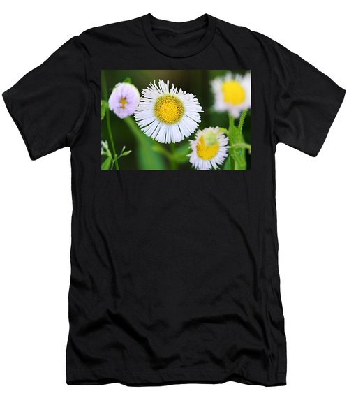 Daisy Fleabane Men's T-Shirt (Athletic Fit)