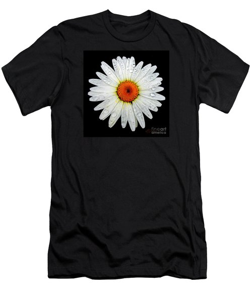Daisy  Men's T-Shirt (Slim Fit) by Patricia L Davidson
