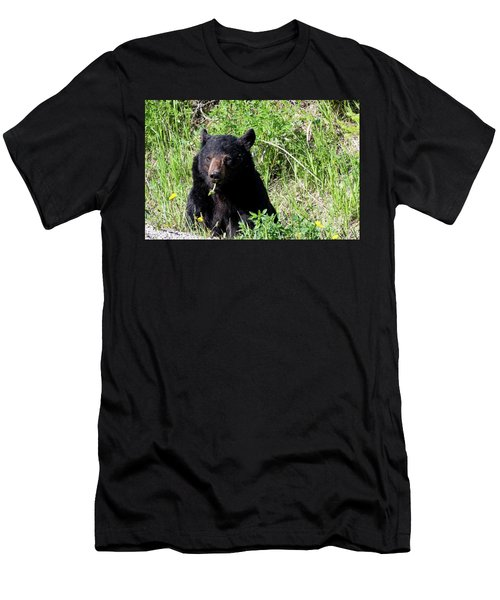 Dandelion Bear Men's T-Shirt (Athletic Fit)