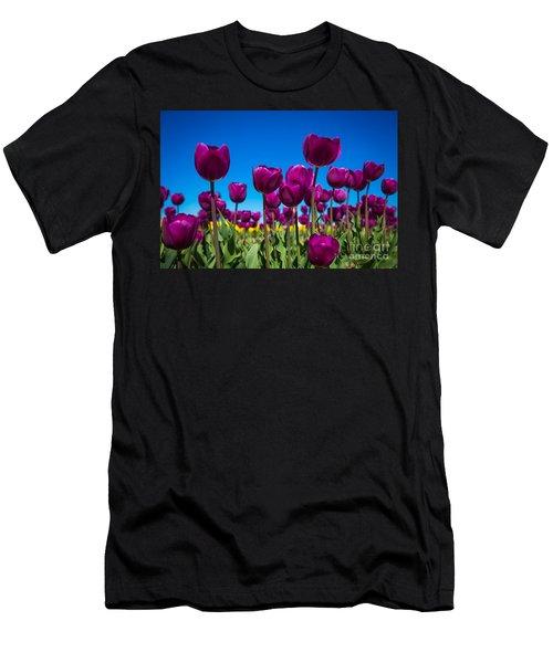 Dark Purple Tulips Men's T-Shirt (Slim Fit) by John Roberts