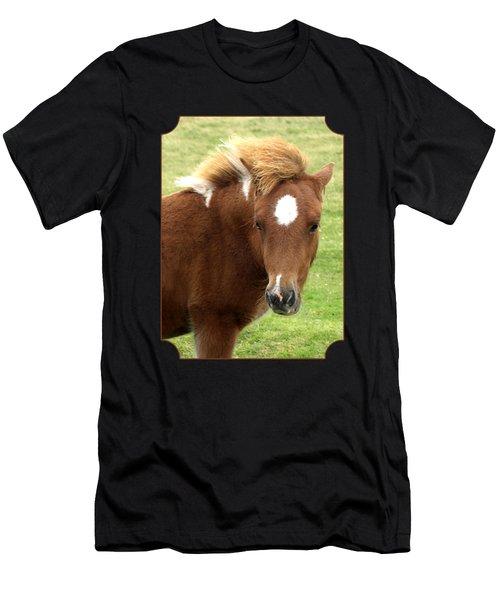 Dartmoor Pony Men's T-Shirt (Athletic Fit)