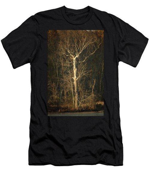 Day Break Tree Men's T-Shirt (Athletic Fit)