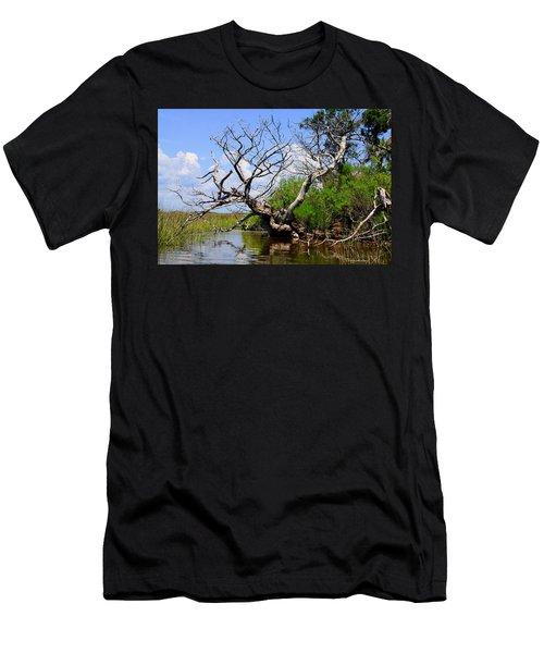 Dead Cedar Tree In Waccasassa Preserve Men's T-Shirt (Athletic Fit)