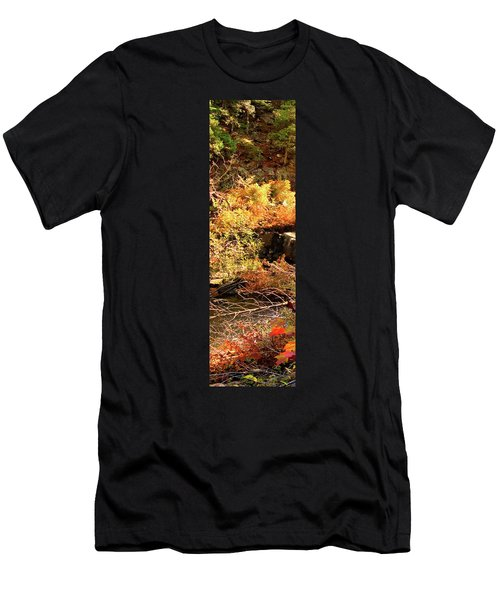 3 Of 6 Dead River Falls  Marquette Michigan Section Men's T-Shirt (Athletic Fit)