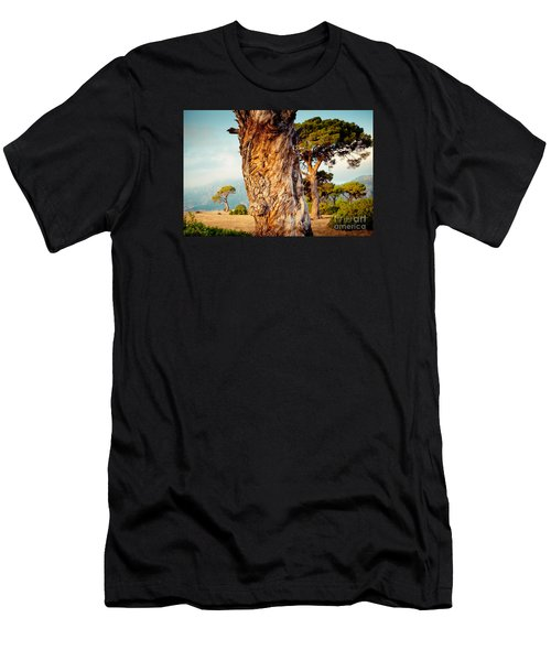 Dead Tree And Forest  Men's T-Shirt (Athletic Fit)