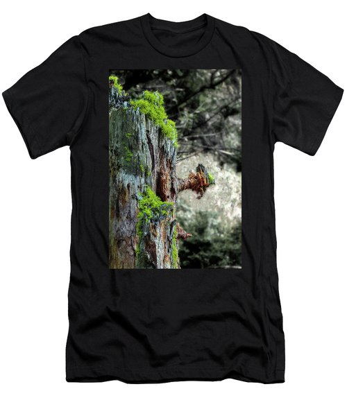 Death And Life Along The Path Men's T-Shirt (Athletic Fit)