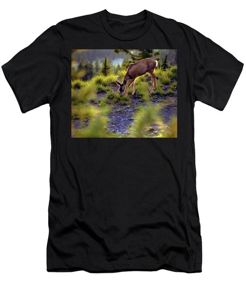Deer At Crater Lake, Oregon Men's T-Shirt (Athletic Fit)