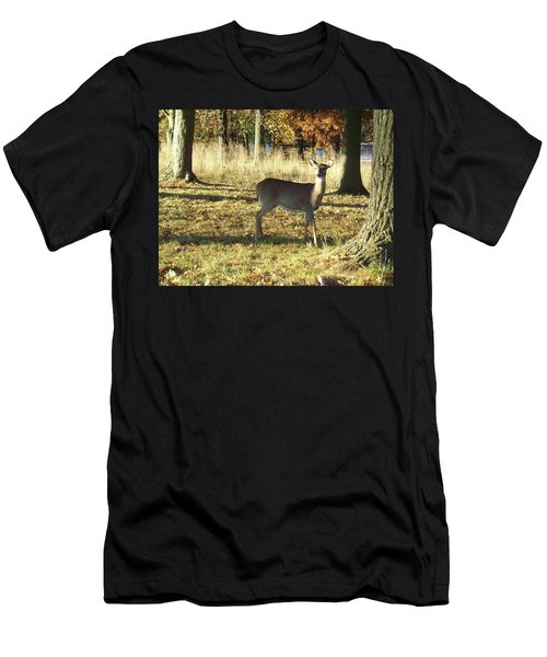 Deer At Valley Forge Men's T-Shirt (Athletic Fit)