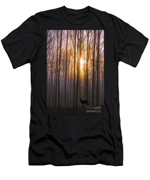 Deer In The Forest At Sunrise Men's T-Shirt (Slim Fit) by Diane Diederich