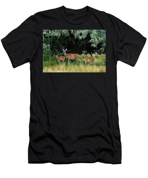Deer Mom Men's T-Shirt (Slim Fit) by Larry Campbell