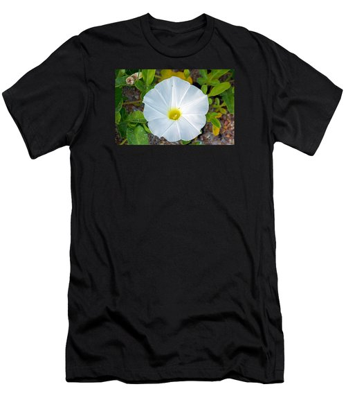 Delicate Beach Flower Men's T-Shirt (Slim Fit) by Kenneth Albin