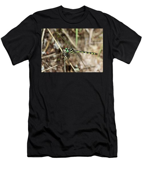 Delta-spotted Spiketail  Male Men's T-Shirt (Athletic Fit)