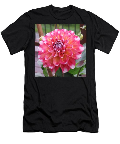 Denali Dahlia Men's T-Shirt (Athletic Fit)