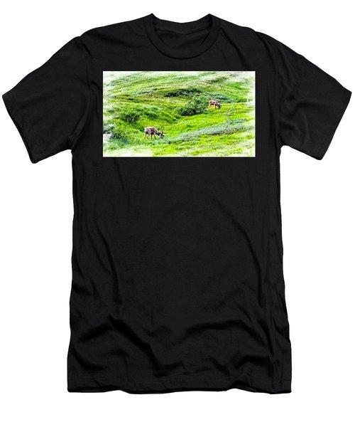 Denali National Park Caribou Men's T-Shirt (Athletic Fit)