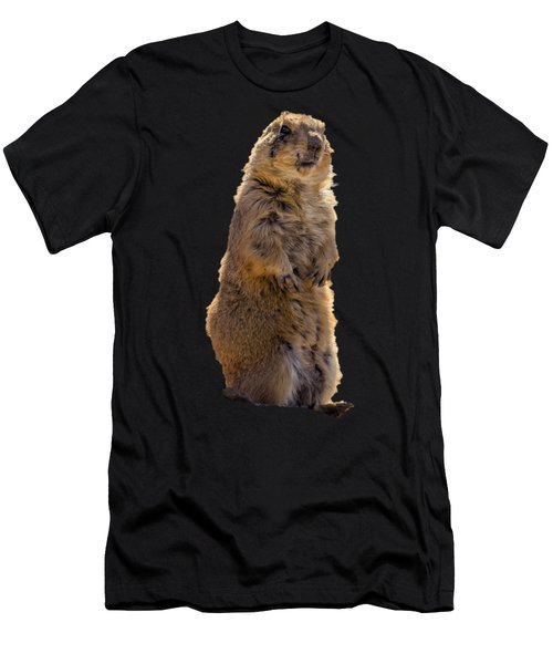 Desert Dawg Men's T-Shirt (Athletic Fit)