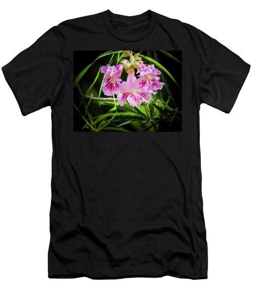 Desert Willow Men's T-Shirt (Athletic Fit)