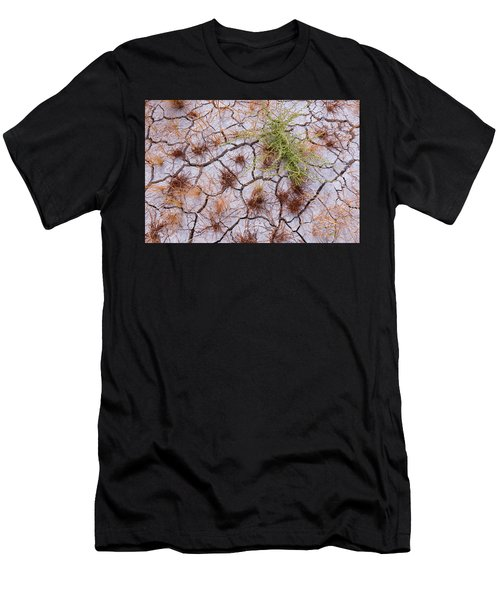 Details Of The Playa Men's T-Shirt (Athletic Fit)