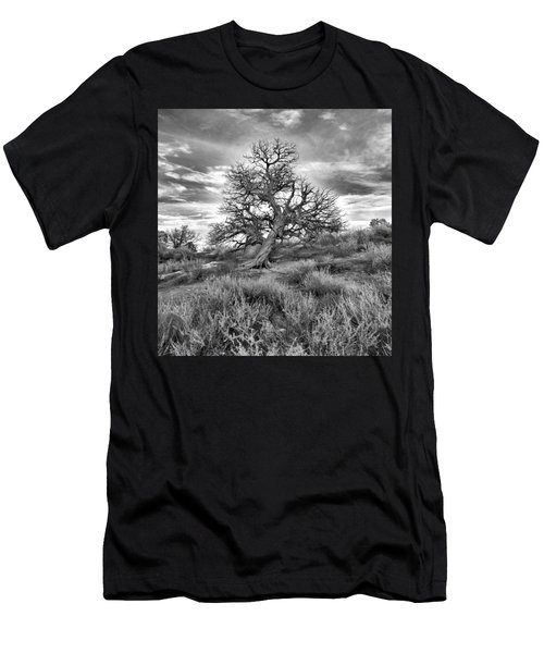 Devils Canyon Tree Men's T-Shirt (Athletic Fit)