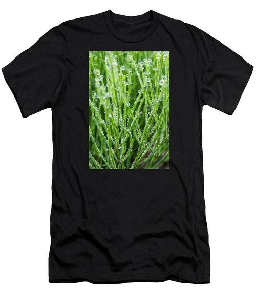 Dew Drop Men's T-Shirt (Athletic Fit)