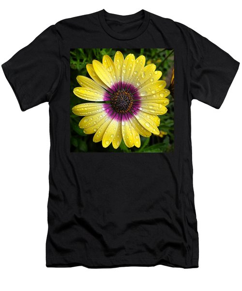 Dew Dropped Daisy Men's T-Shirt (Athletic Fit)