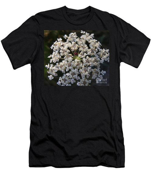 Dew On Queen Annes Lace Men's T-Shirt (Athletic Fit)