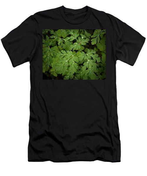 Dewey Leaves Men's T-Shirt (Athletic Fit)