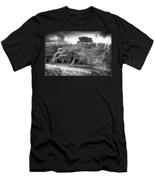 Distorted Trees Men's T-Shirt (Athletic Fit)