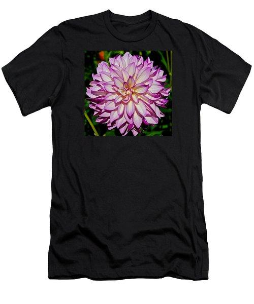 Divine Dahlia Blessings  Men's T-Shirt (Athletic Fit)