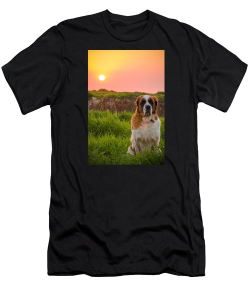 Dog And Sunset Men's T-Shirt (Athletic Fit)
