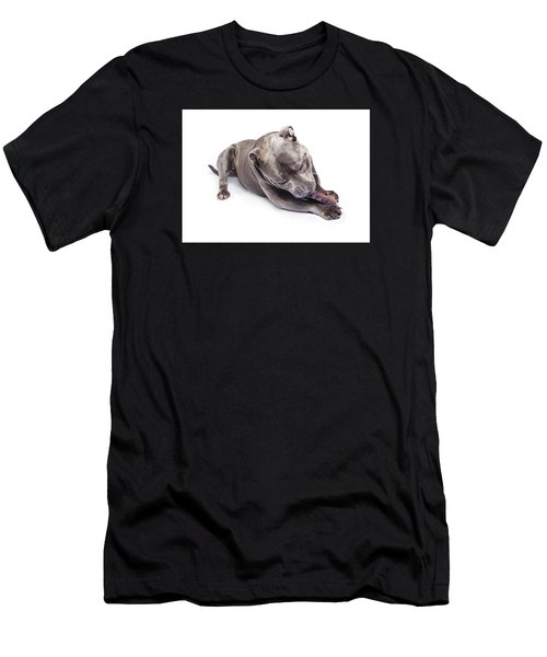 Men's T-Shirt (Athletic Fit) featuring the photograph Dog Eating Chew Toy by Jorgo Photography - Wall Art Gallery