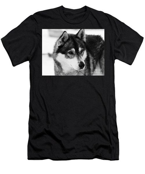 Dog - Monochrome 3 Men's T-Shirt (Athletic Fit)