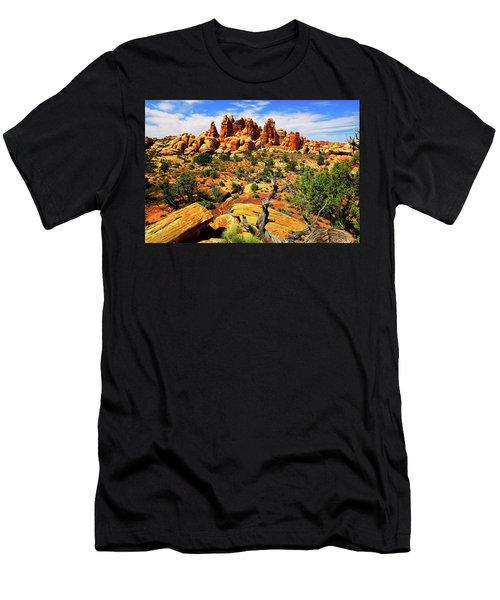 Doll House In The Desert Men's T-Shirt (Athletic Fit)