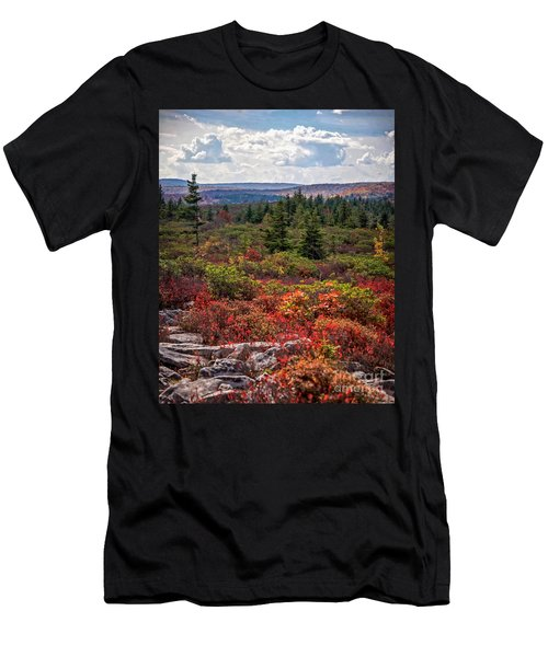 Dolly Sods Wilderness In Autumn 4273 Men's T-Shirt (Athletic Fit)
