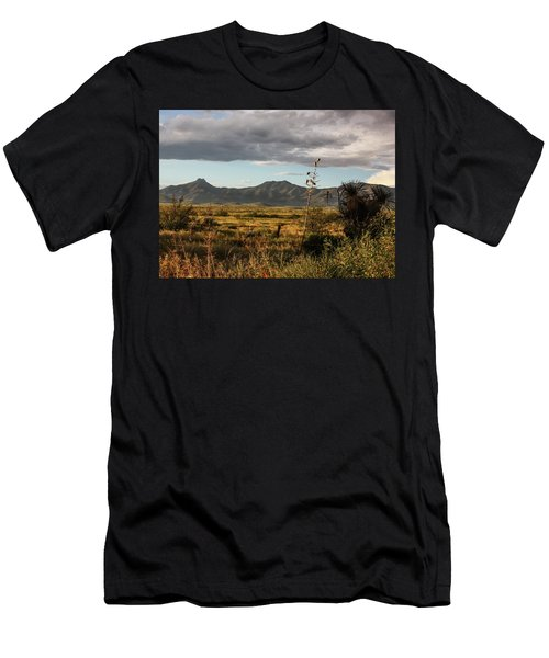 Dos Cabezas Grasslands At Dusk Men's T-Shirt (Athletic Fit)