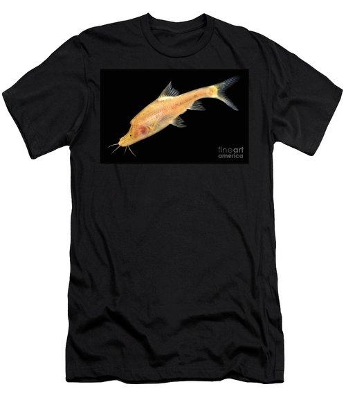 Double Horned Golden Line Barbel Men's T-Shirt (Athletic Fit)