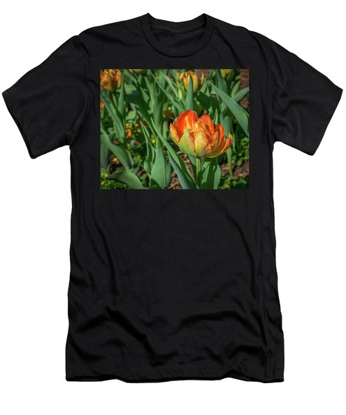 Double Multicolor Tulips Men's T-Shirt (Athletic Fit)