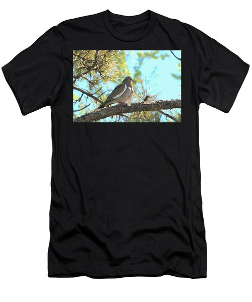 Dove In Pine Tree Men's T-Shirt (Athletic Fit)